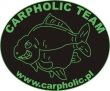 Carpholic Team